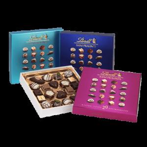 CHOCOLATE PRALINES LINDT MINI 100GR